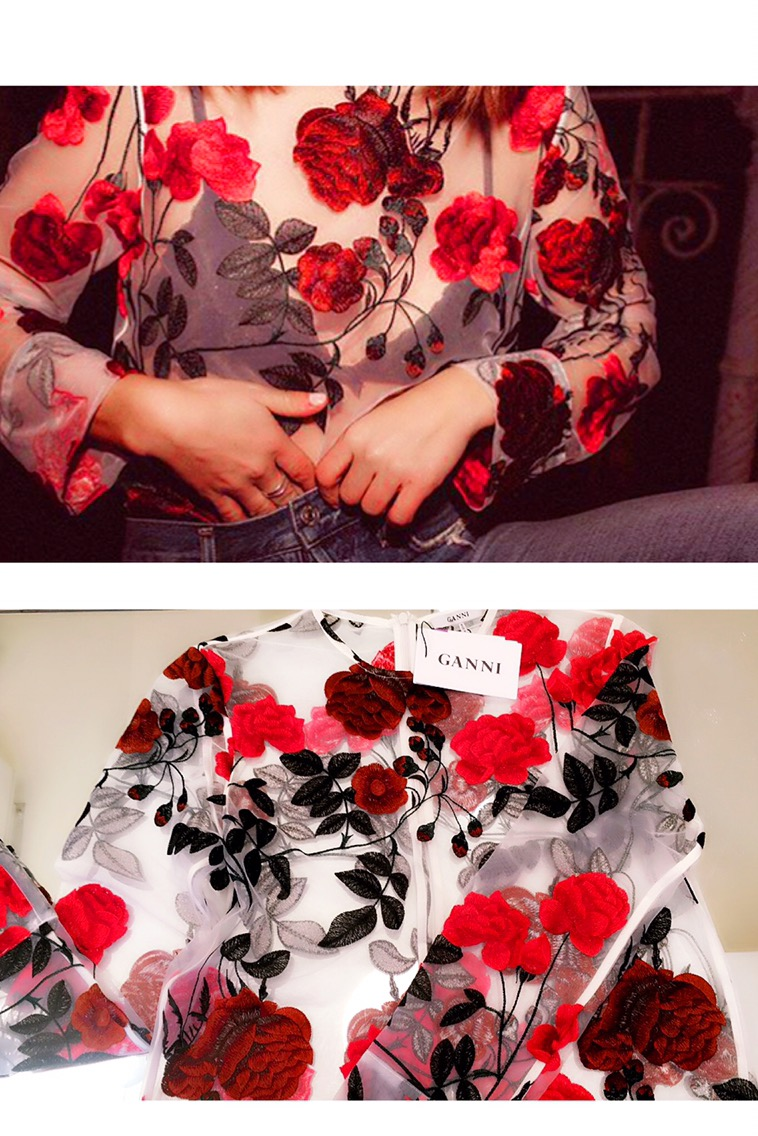 Embroidered Mesh Fabric Blouse